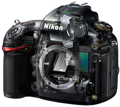 Nikon D800 Skeleton