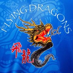 2012-06-17-Dragon Boat Festival 2012 : Team Logo