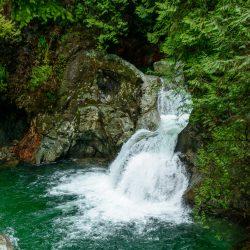 Lynn Valley Hike : Suspension Bridge and Twin Falls 2012-12-29 : Twin falls