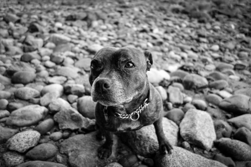 Sony RX100 Black and White : Jammie Beach : Lightroom Edit