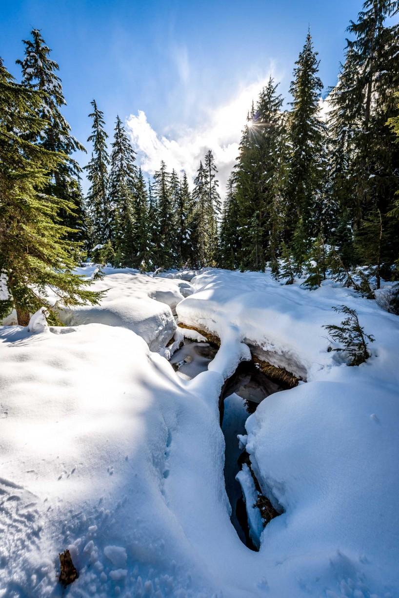 Cypress Mountain Snowshoeing 2014-03-20: Spring Melt