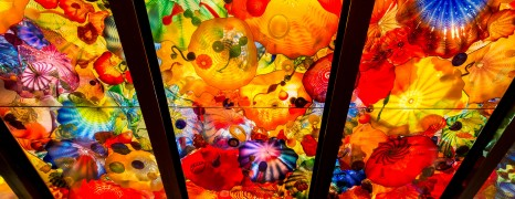 The Wonderful Art of Dale Chihuly