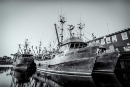 Fishing Boats in Vancouver Harbour