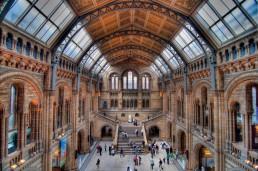 Museum of Natural History, London, UK