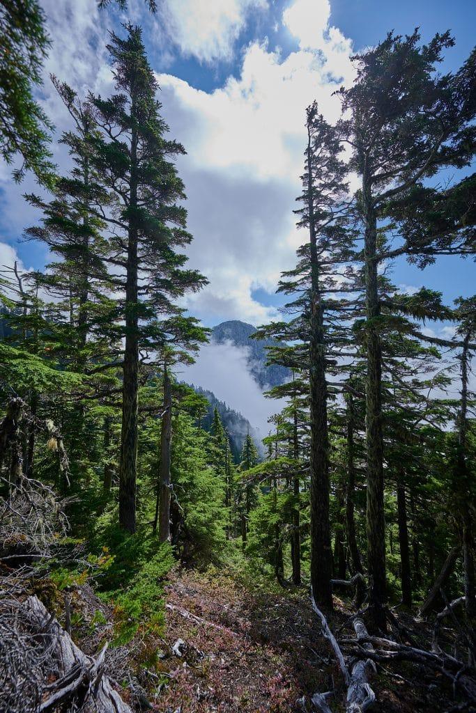 Hiking Brunswick Mountain 41
