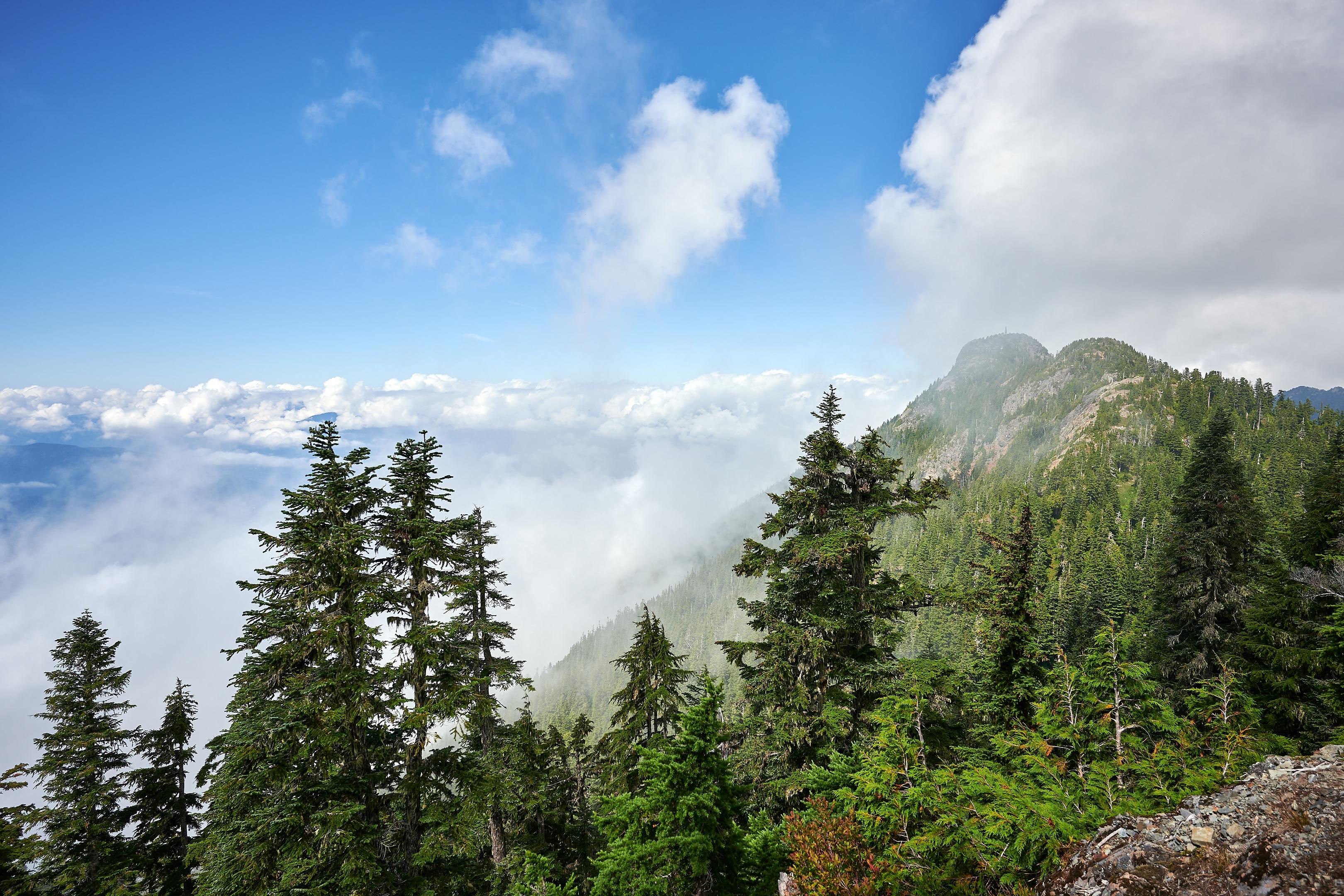 Hiking Brunswick Mountain 43