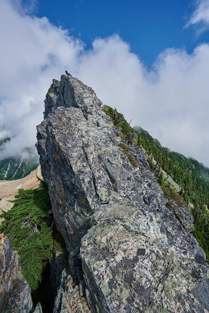 Hiking Brunswick Mountain 49