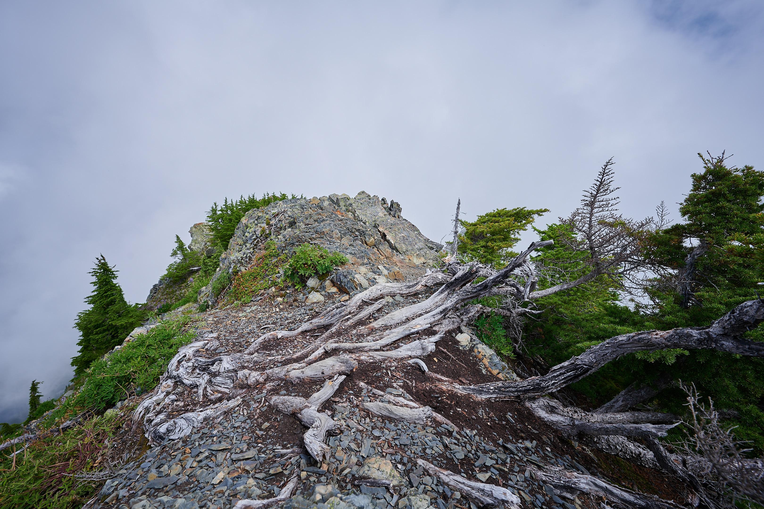 Hiking Brunswick Mountain 52
