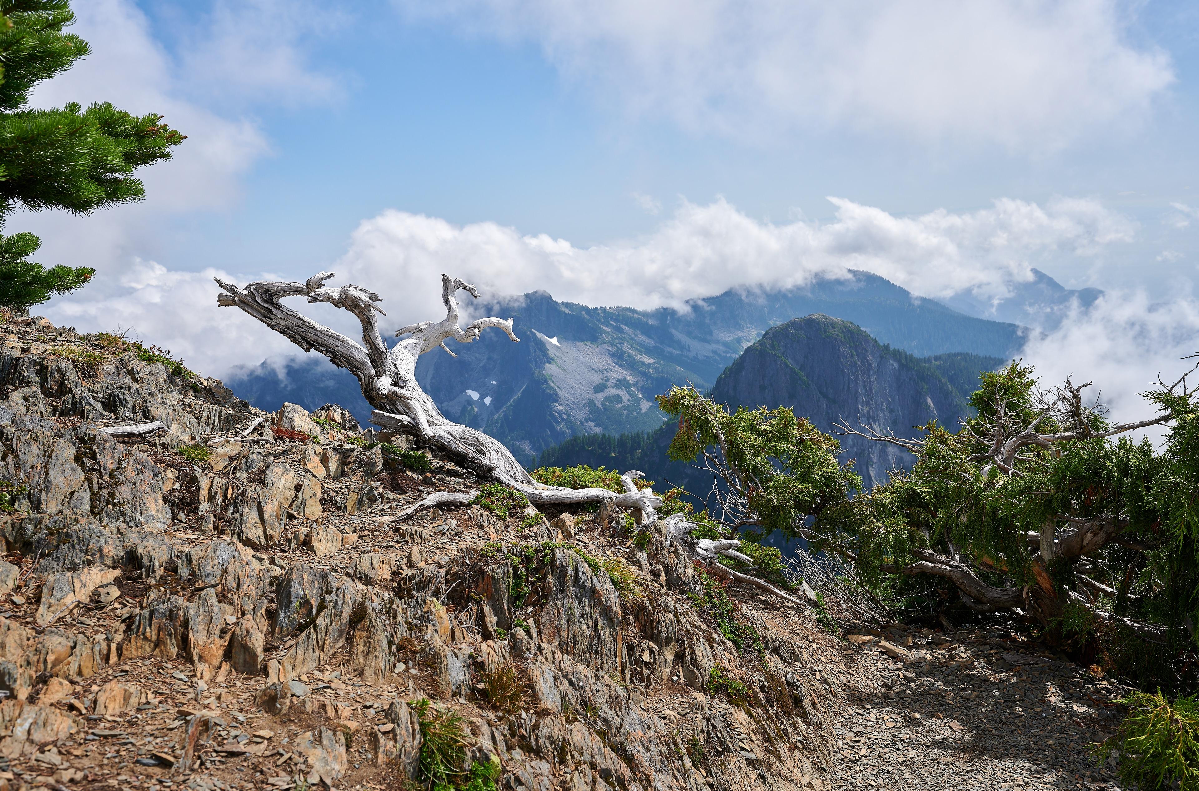 Hiking Brunswick Mountain 56